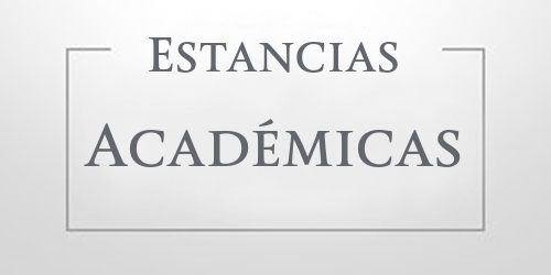 Estancias Académicas